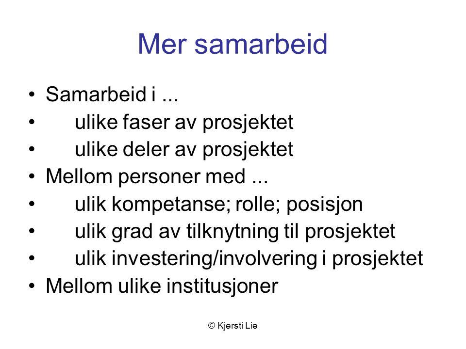 © Kjersti Lie Mer samarbeid Samarbeid i...