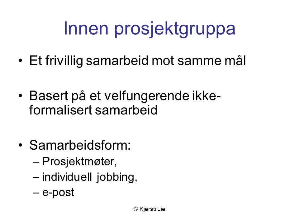 © Kjersti Lie Innen prosjektgruppa Et frivillig samarbeid mot samme mål Basert på et velfungerende ikke- formalisert samarbeid Samarbeidsform: –Prosjektmøter, –individuell jobbing, –e-post
