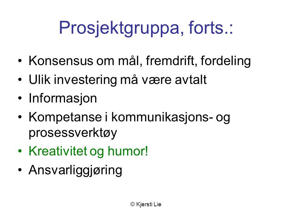 © Kjersti Lie Prosjektgruppa, forts.: Konsensus om mål, fremdrift, fordeling Ulik investering må være avtalt Informasjon Kompetanse i kommunikasjons- og prosessverktøy Kreativitet og humor.