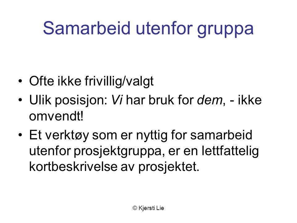 © Kjersti Lie Samarbeid utenfor gruppa Ofte ikke frivillig/valgt Ulik posisjon: Vi har bruk for dem, - ikke omvendt.
