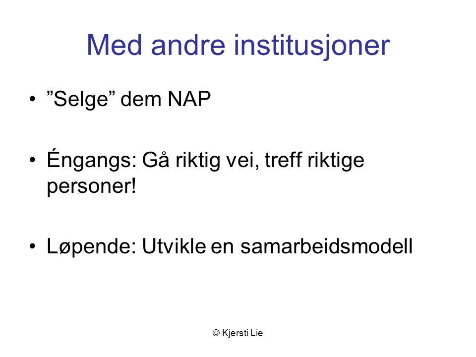© Kjersti Lie Med andre institusjoner Selge dem NAP Éngangs: Gå riktig vei, treff riktige personer.