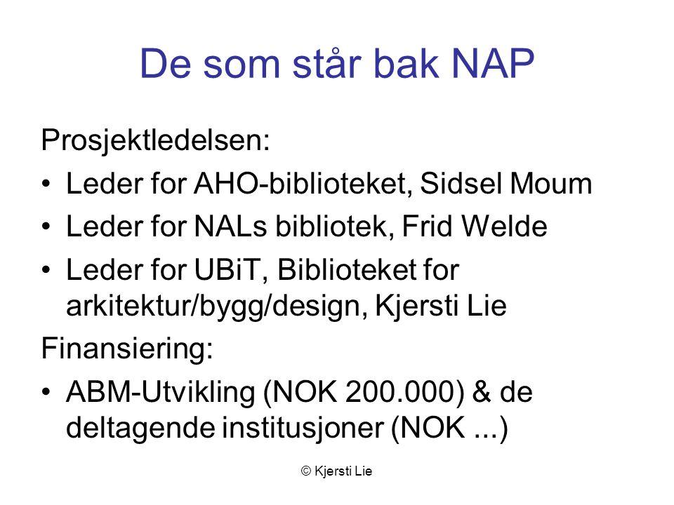 © Kjersti Lie NAP : norsk arkitekturportal Hvorfor Hva For hvem Hvordan Fremtidsvyer