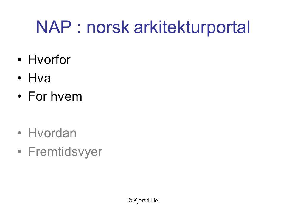 © Kjersti Lie Hvorfor NAP.