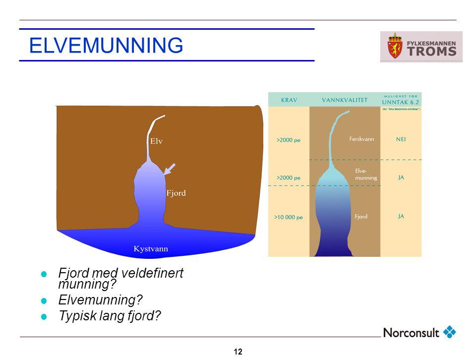 12 Fjord med veldefinert munning? Elvemunning? Typisk lang fjord? ELVEMUNNING