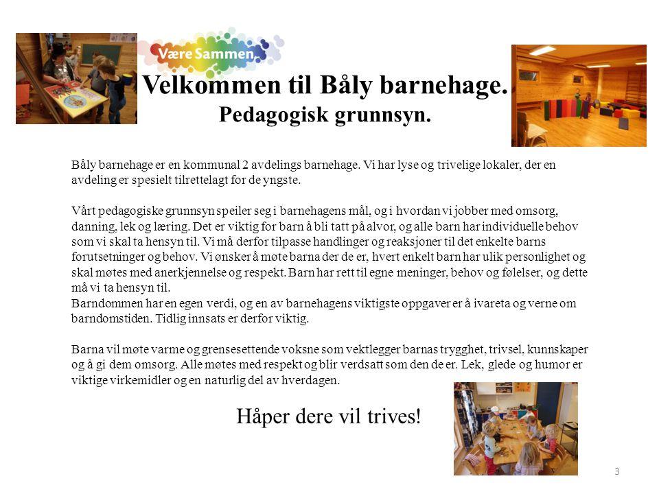 Båly barnehage er en kommunal 2 avdelings barnehage. Vi har lyse og trivelige lokaler, der en avdeling er spesielt tilrettelagt for de yngste. Vårt pe