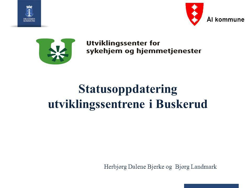 Statusoppdatering utviklingssentrene i Buskerud Herbjørg Dalene Bjerke og Bjørg Landmark Ål kommune