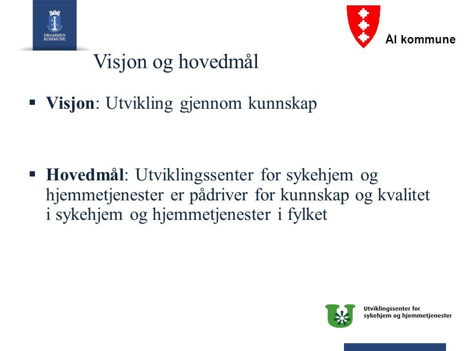 Visjon og hovedmål  Visjon: Utvikling gjennom kunnskap  Hovedmål: Utviklingssenter for sykehjem og hjemmetjenester er pådriver for kunnskap og kvali