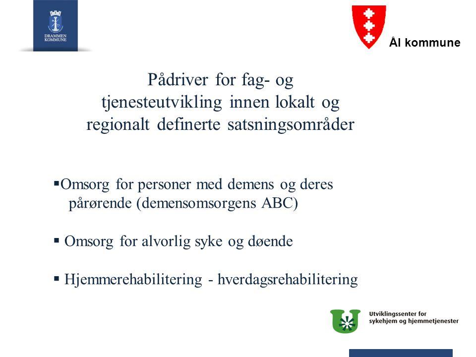 Pådriver for fag- og tjenesteutvikling innen lokalt og regionalt definerte satsningsområder  Omsorg for personer med demens og deres pårørende (demen