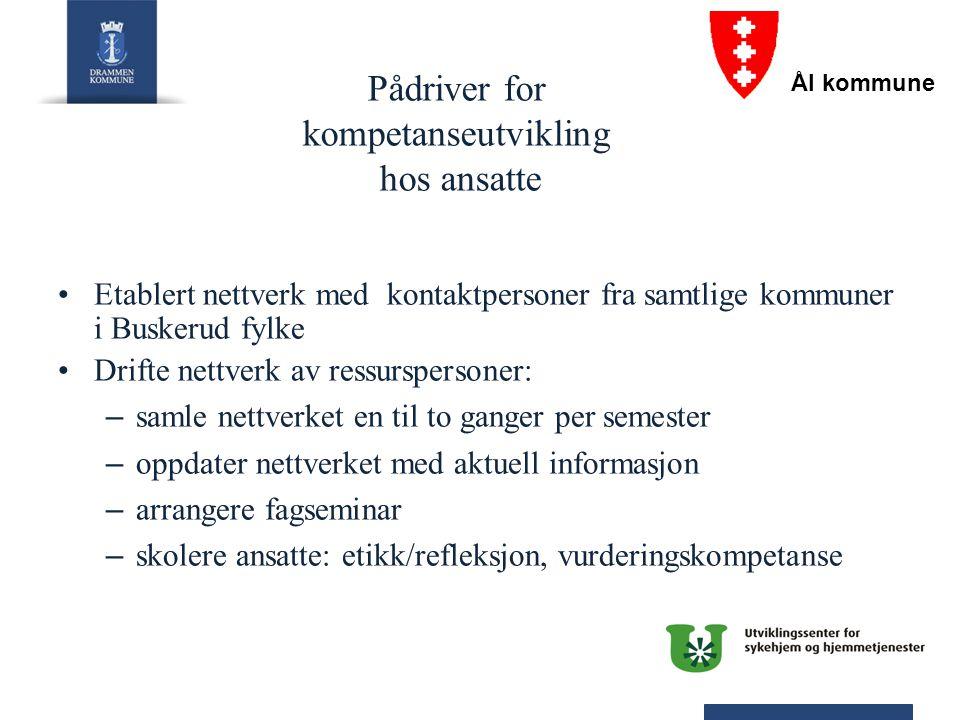 Pådriver for kompetanseutvikling hos ansatte Etablert nettverk med kontaktpersoner fra samtlige kommuner i Buskerud fylke Drifte nettverk av ressurspe