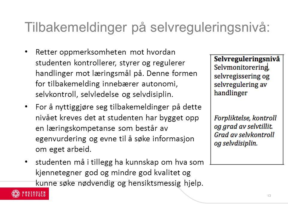 Tilbakemeldinger på selvreguleringsnivå: 13 Retter oppmerksomheten mot hvordan studenten kontrollerer, styrer og regulerer handlinger mot læringsmål p