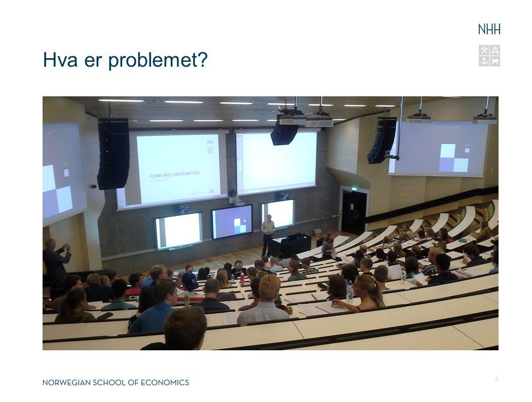 Hva er problemet? 4