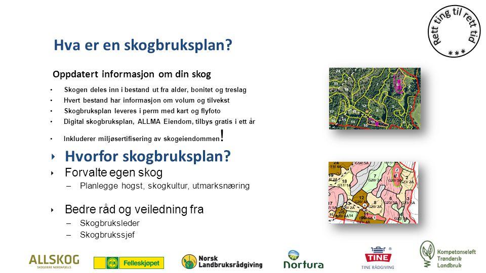 Hva er en skogbruksplan.