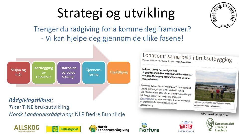 Strategi og utvikling Visjon og mål Kartlegging av ressurser Utarbeide og velge strategi Gjennom- føring Oppfølging Trenger du rådgiving for å komme deg framover.