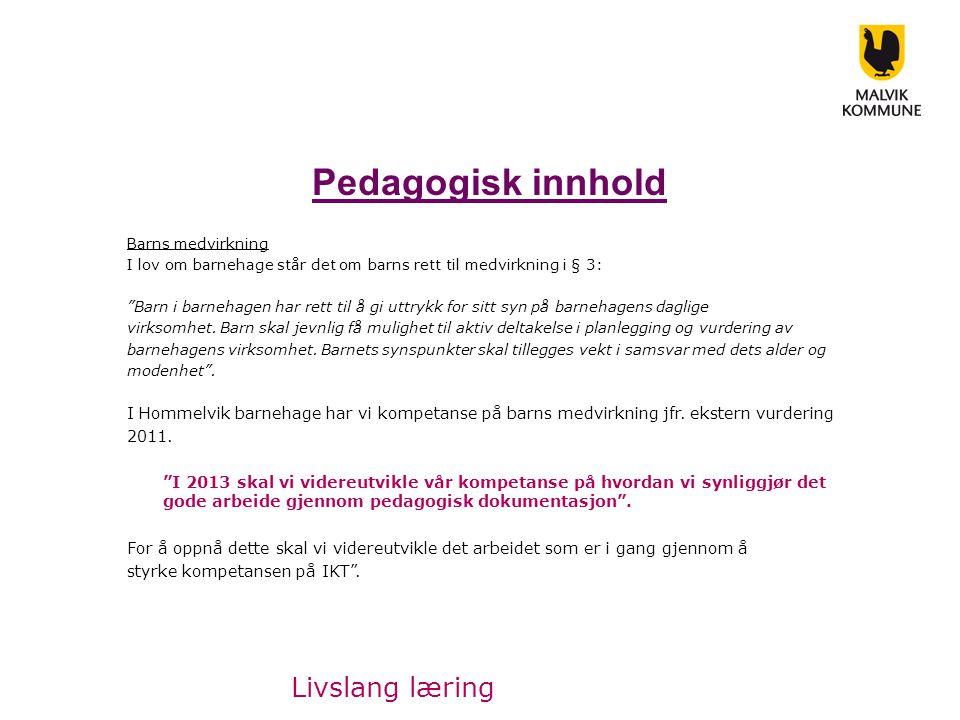 Pedagogisk innhold Barns medvirkning I lov om barnehage står det om barns rett til medvirkning i § 3: Barn i barnehagen har rett til å gi uttrykk for sitt syn på barnehagens daglige virksomhet.