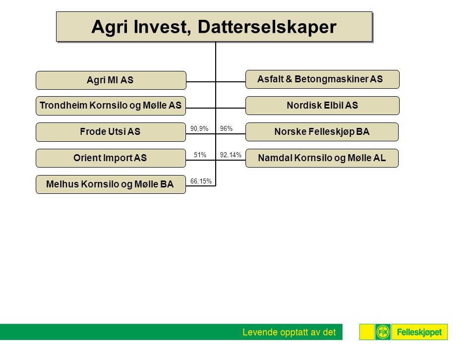 Frode Utsi AS Orient Import AS 51% 90,9% Agri Invest, Datterselskaper Nordisk Elbil AS Asfalt & Betongmaskiner AS Agri MI AS Trondheim Kornsilo og Møl