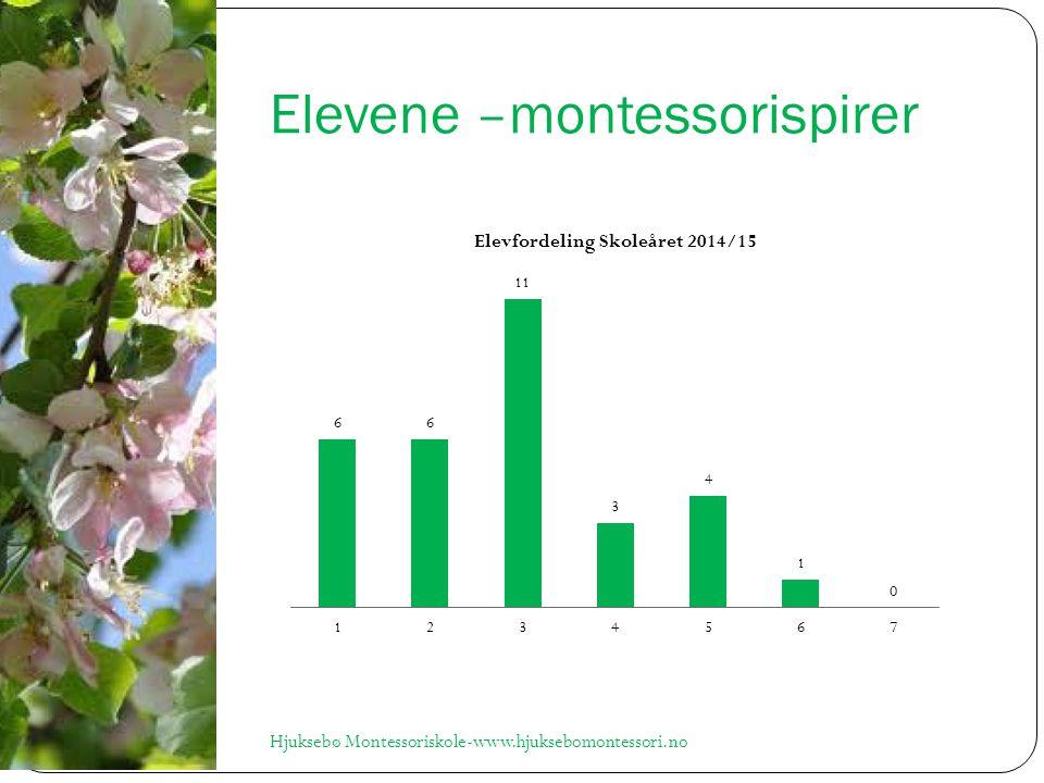 Elevene –montessorispirer Hjuksebø Montessoriskole-www.hjuksebomontessori.no