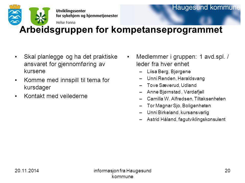20.11.2014informasjon fra Haugesund kommune 20 Arbeidsgruppen for kompetanseprogrammet Skal planlegge og ha det praktiske ansvaret for gjennomføring a