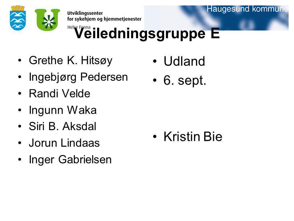 Veiledningsgruppe E Grethe K. Hitsøy Ingebjørg Pedersen Randi Velde Ingunn Waka Siri B. Aksdal Jorun Lindaas Inger Gabrielsen Udland 6. sept. Kristin