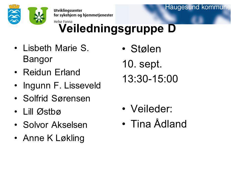 Veiledningsgruppe D Lisbeth Marie S. Bangor Reidun Erland Ingunn F. Lisseveld Solfrid Sørensen Lill Østbø Solvor Akselsen Anne K Løkling Stølen 10. se