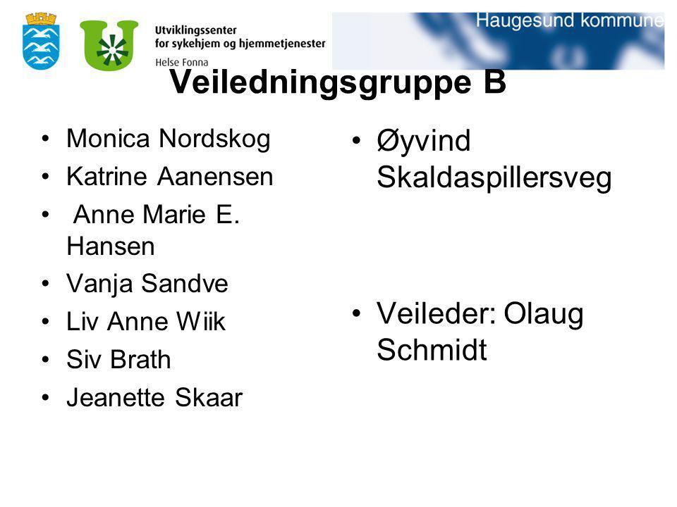 Veiledningsgruppe B Monica Nordskog Katrine Aanensen Anne Marie E. Hansen Vanja Sandve Liv Anne Wiik Siv Brath Jeanette Skaar Øyvind Skaldaspillersveg