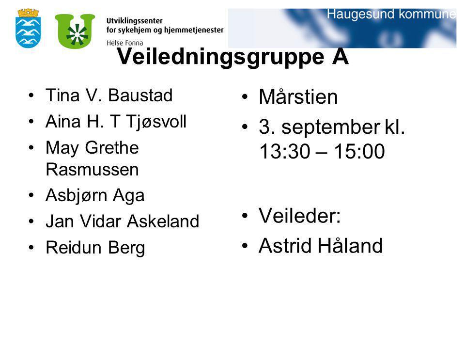 Veiledningsgruppe A Tina V. Baustad Aina H. T Tjøsvoll May Grethe Rasmussen Asbjørn Aga Jan Vidar Askeland Reidun Berg Mårstien 3. september kl. 13:30