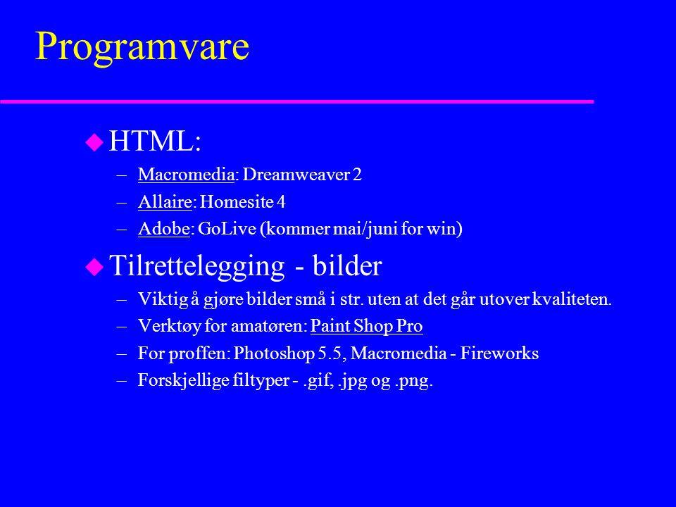 Programvare u HTML: –Macromedia: Dreamweaver 2Macromedia –Allaire: Homesite 4Allaire –Adobe: GoLive (kommer mai/juni for win)Adobe u Tilrettelegging - bilder –Viktig å gjøre bilder små i str.