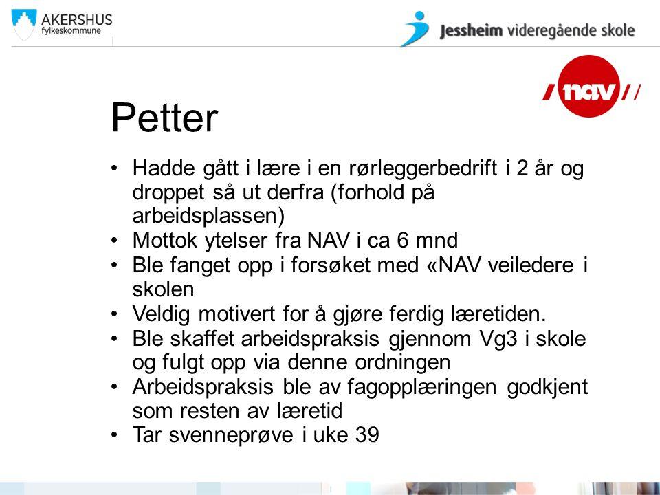 Petter Hadde gått i lære i en rørleggerbedrift i 2 år og droppet så ut derfra (forhold på arbeidsplassen) Mottok ytelser fra NAV i ca 6 mnd Ble fanget