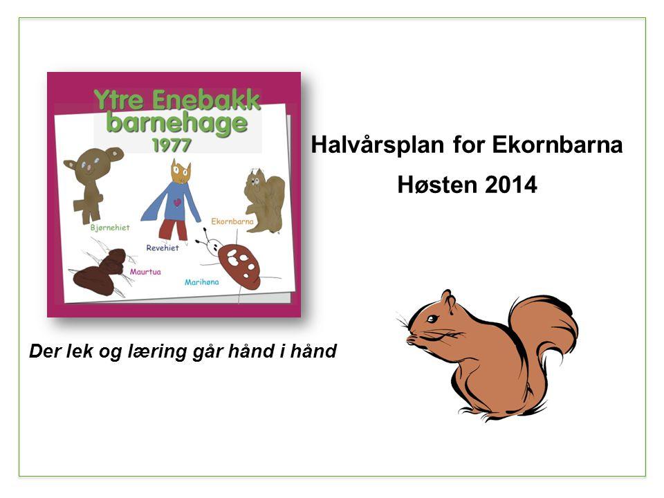 Der lek og læring går hånd i hånd Halvårsplan for Ekornbarna Høsten 2014