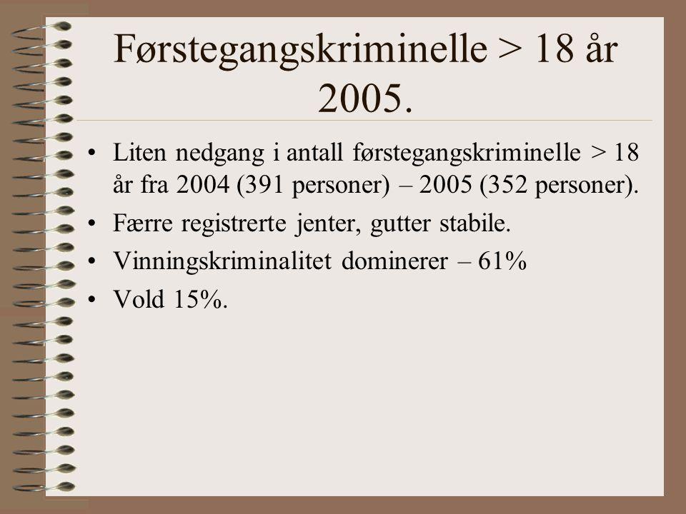 Førstegangskriminelle > 18 år 2005.