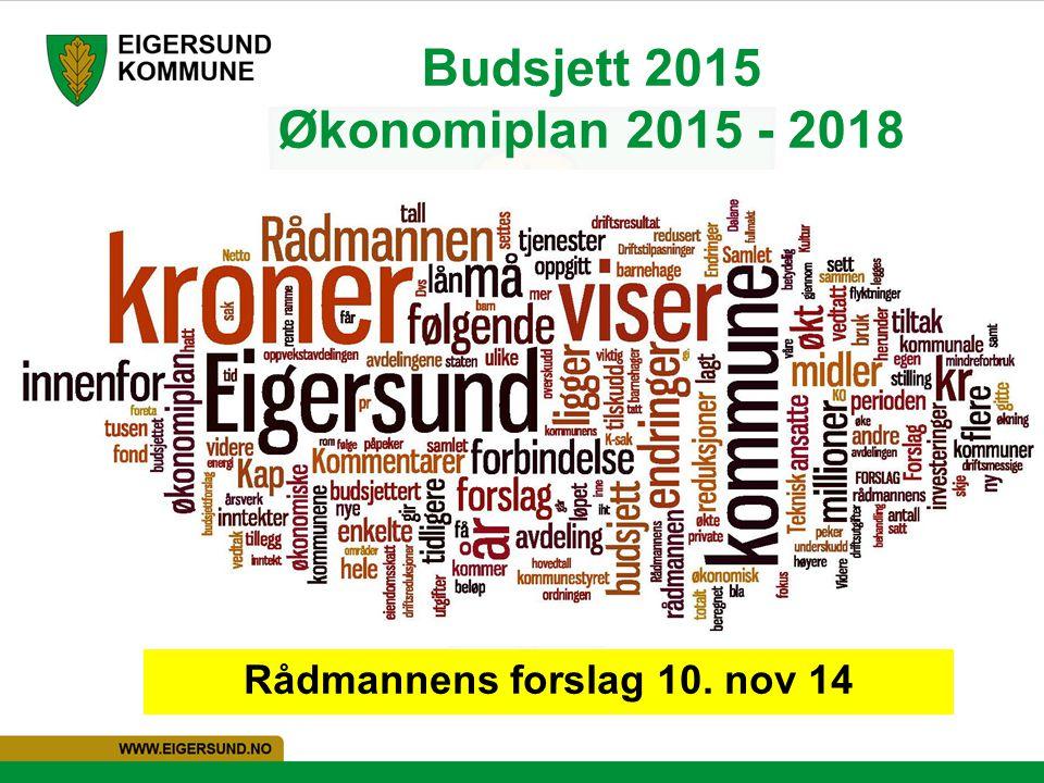 Budsjett 2015 Økonomiplan 2015 - 2018 Rådmannens forslag 10. nov 14