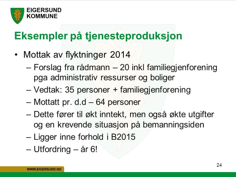 24 Eksempler på tjenesteproduksjon Mottak av flyktninger 2014 –Forslag fra rådmann – 20 inkl familiegjenforening pga administrativ ressurser og bolige