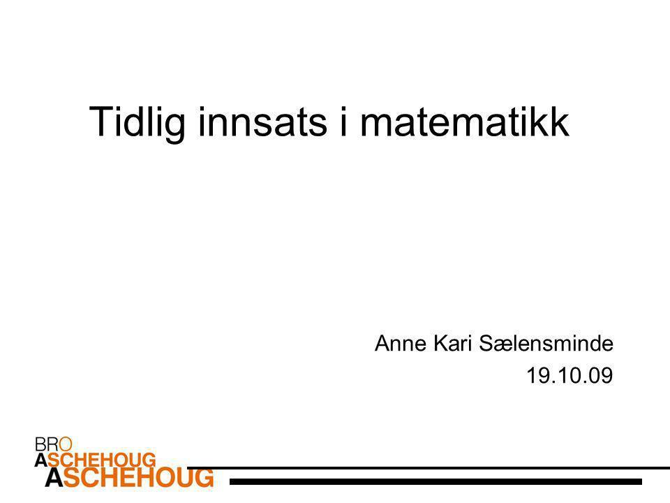 Tidlig innsats i matematikk Anne Kari Sælensminde 19.10.09