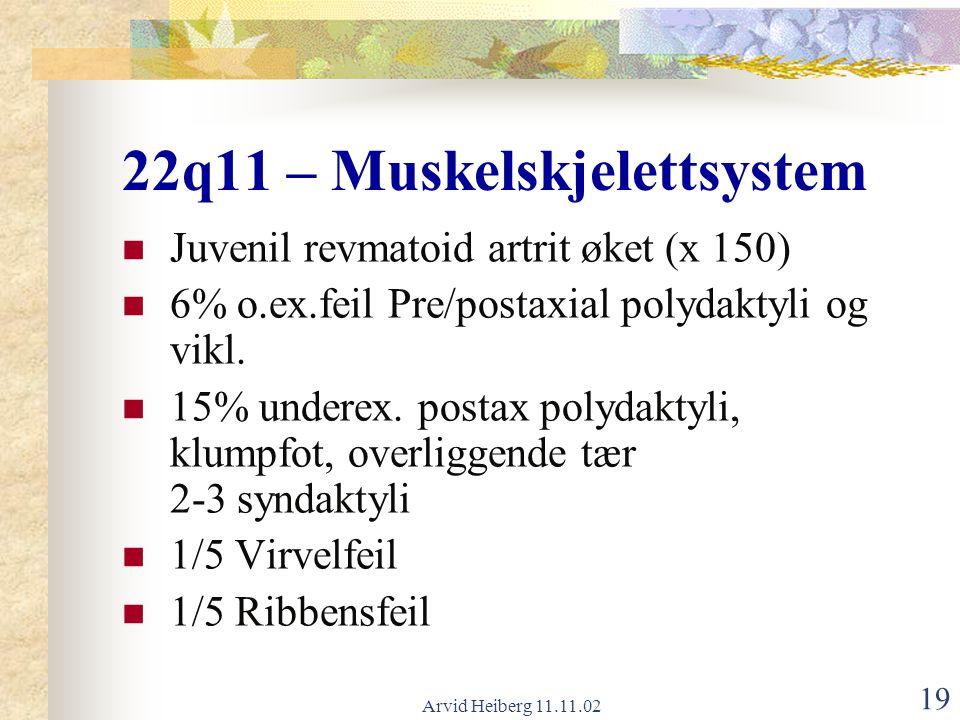 Arvid Heiberg 11.11.02 19 22q11 – Muskelskjelettsystem Juvenil revmatoid artrit øket (x 150) 6% o.ex.feil Pre/postaxial polydaktyli og vikl. 15% under