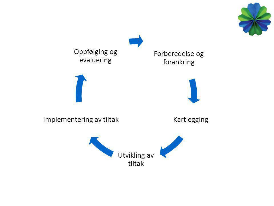 Forberedelse og forankring Kartlegging Utvikling av tiltak Implementering av tiltak Oppfølging og evaluering