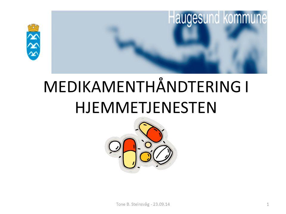 Nasjonal pasientsikkerhetskampanjen «I trygge hender» -Riktig legemiddelbruk i hjemmetjenesten -Prosjekt 2012 - 2013 Mål utrulling 2014 Utsatt til sommer 2015 Tone B.