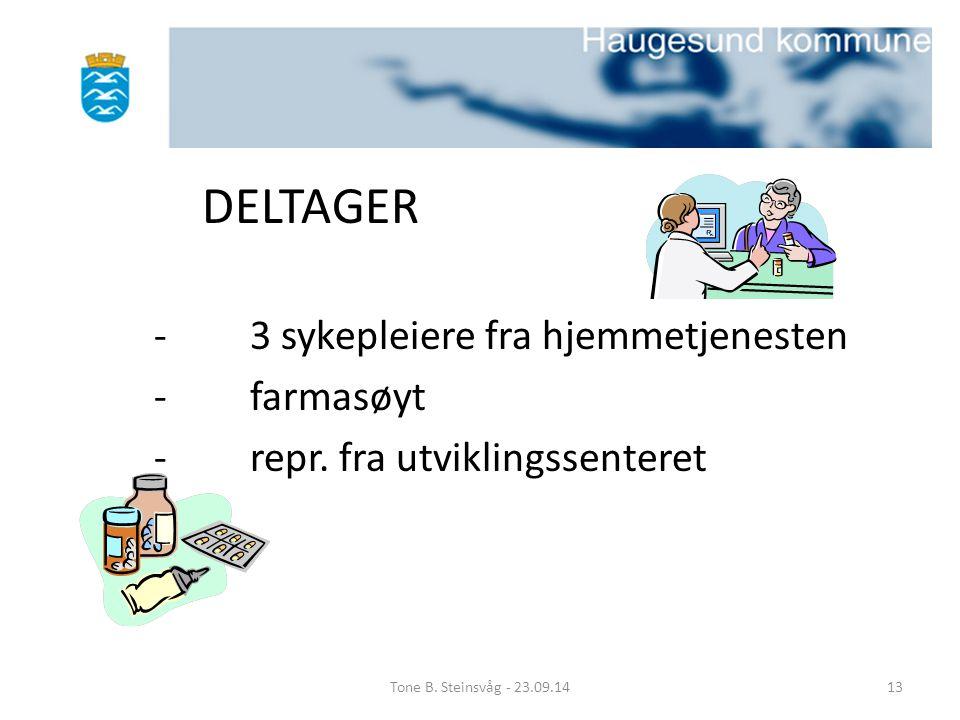 DELTAGER -3 sykepleiere fra hjemmetjenesten - farmasøyt -repr. fra utviklingssenteret Tone B. Steinsvåg - 23.09.1413