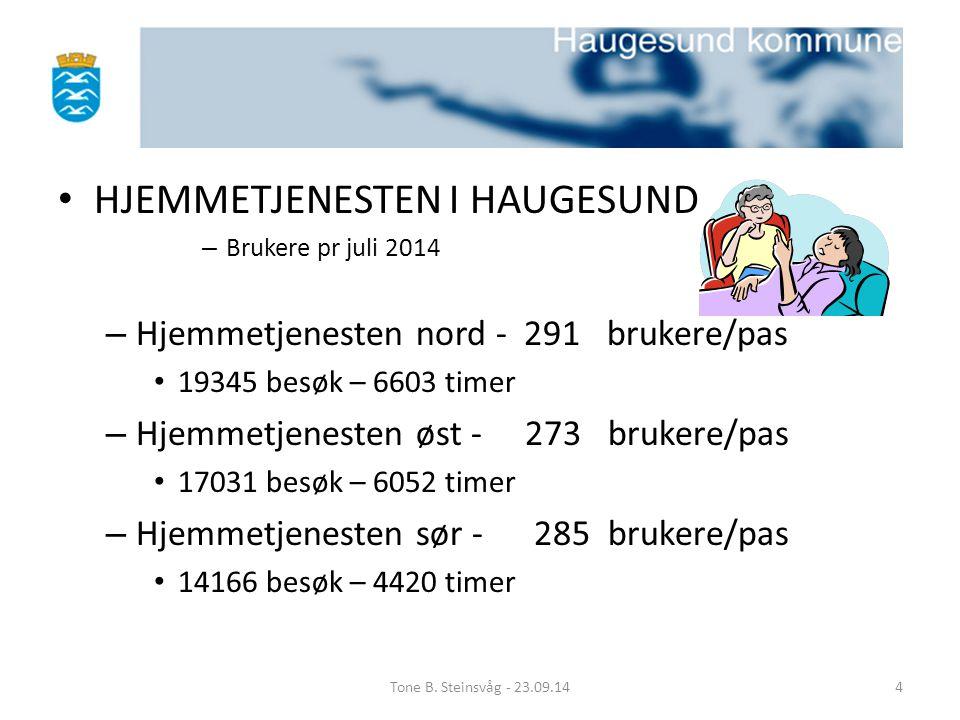 HJEMMETJENESTEN I HAUGESUND – Brukere pr juli 2014 – Hjemmetjenesten nord - 291 brukere/pas 19345 besøk – 6603 timer – Hjemmetjenesten øst - 273 bruke