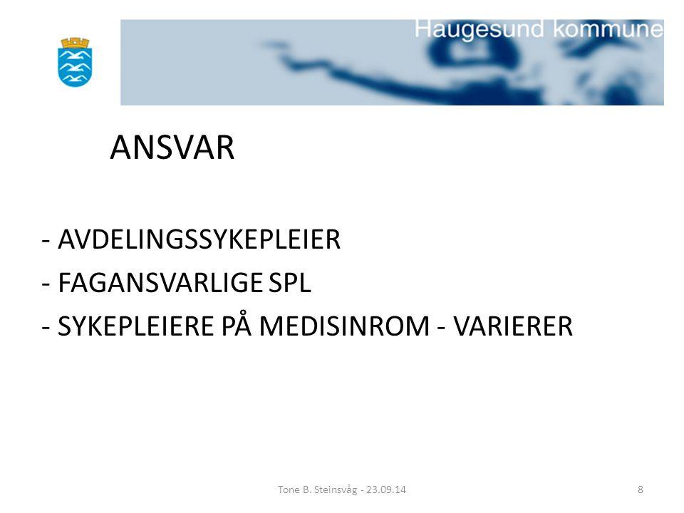 ANSVAR - AVDELINGSSYKEPLEIER - FAGANSVARLIGE SPL - SYKEPLEIERE PÅ MEDISINROM - VARIERER Tone B. Steinsvåg - 23.09.148