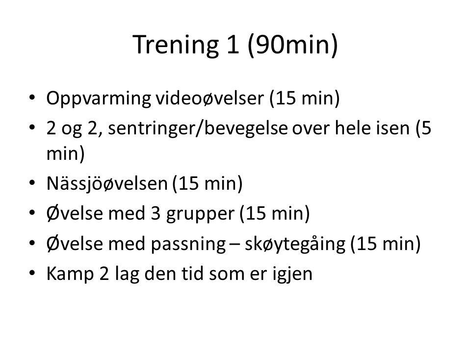 Trening 1 (90min) Oppvarming videoøvelser (15 min) 2 og 2, sentringer/bevegelse over hele isen (5 min) Nässjöøvelsen (15 min) Øvelse med 3 grupper (15 min) Øvelse med passning – skøytegåing (15 min) Kamp 2 lag den tid som er igjen