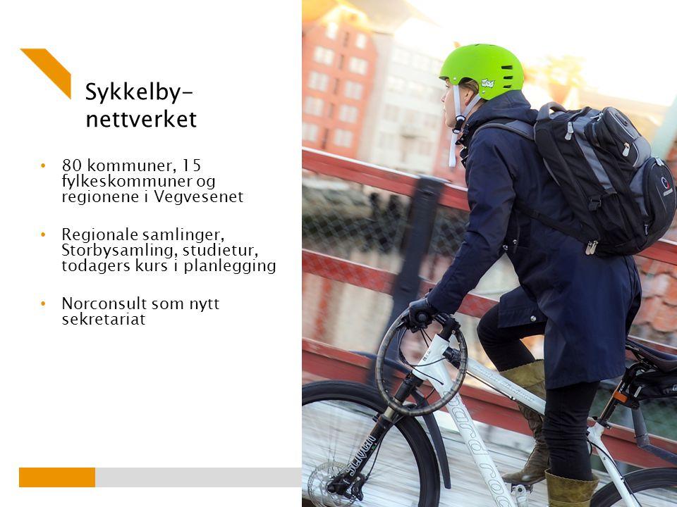 Sykkelby- nettverket 80 kommuner, 15 fylkeskommuner og regionene i Vegvesenet Regionale samlinger, Storbysamling, studietur, todagers kurs i planlegging Norconsult som nytt sekretariat Foto: Knut Opeide