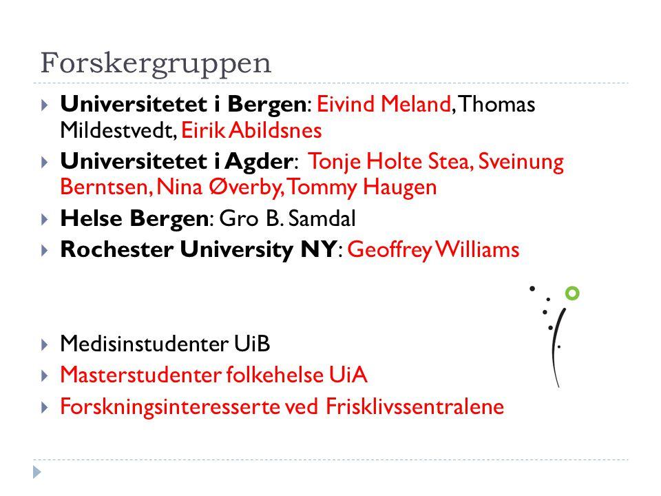 Forskergruppen  Universitetet i Bergen: Eivind Meland, Thomas Mildestvedt, Eirik Abildsnes  Universitetet i Agder: Tonje Holte Stea, Sveinung Bernts