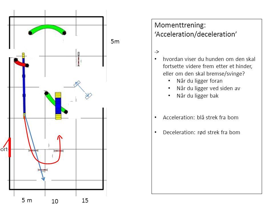 5 m 10 15 5m port Momenttrening: 'Acceleration/deceleration' -> hvordan viser du hunden om den skal fortsette videre frem etter et hinder, eller om den skal bremse/svinge.