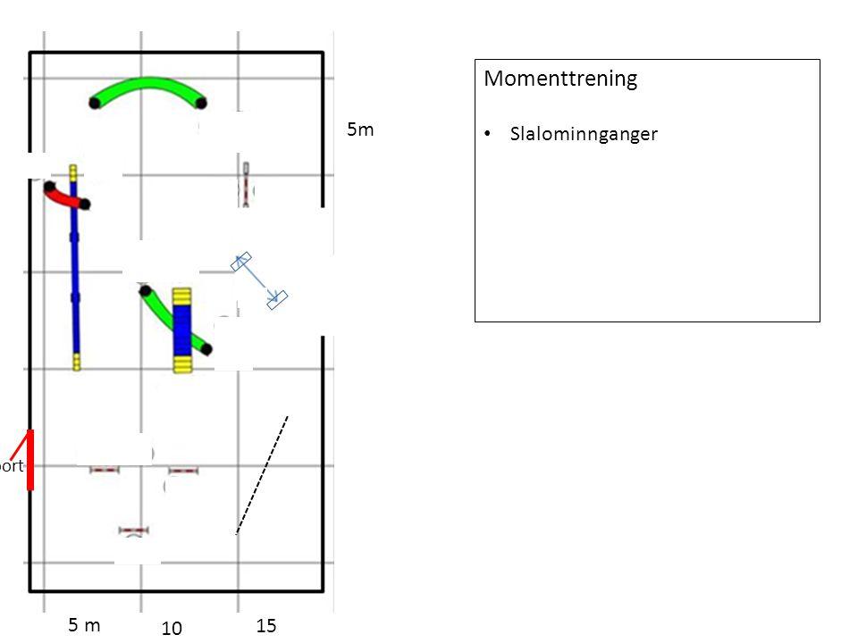 5 m 10 15 5m port Momenttrening Slalominnganger