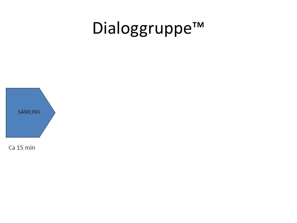 SAMLING ERFARINGS-BASERTE FORTELLINGER Ca 15 min5-6 min pr deltaker Dialoggruppe™