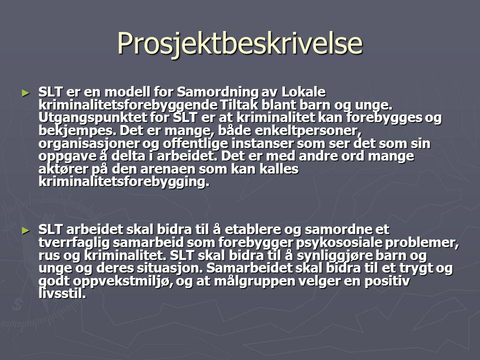 Beskrivelse ► Målgruppa i Søndre Land er barn og unge under 25 år.