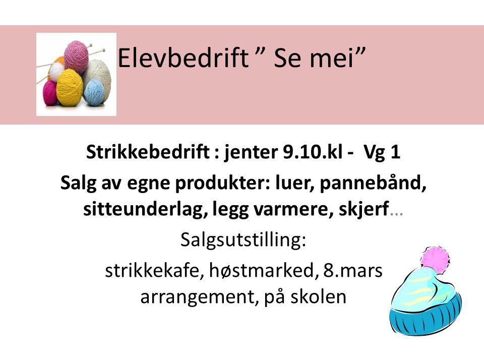 """Elevbedrift """" Se mei"""" Strikkebedrift : jenter 9.10.kl - Vg 1 Salg av egne produkter: luer, pannebånd, sitteunderlag, legg varmere, skjerf… Salgsutstil"""