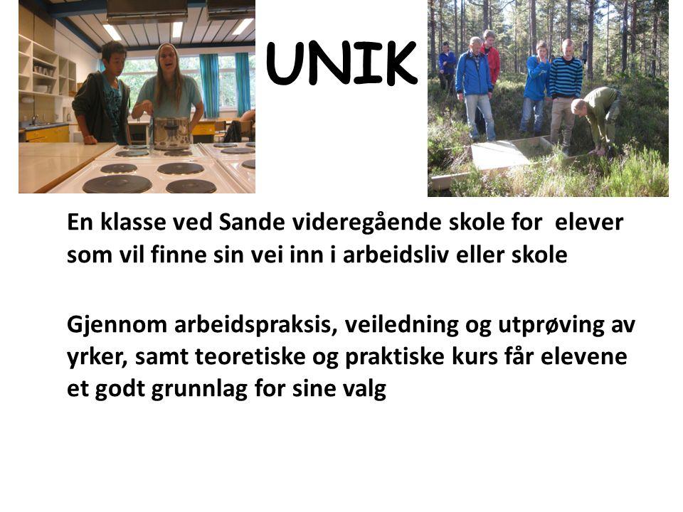 UNIK En klasse ved Sande videregående skole for elever som vil finne sin vei inn i arbeidsliv eller skole Gjennom arbeidspraksis, veiledning og utprøv