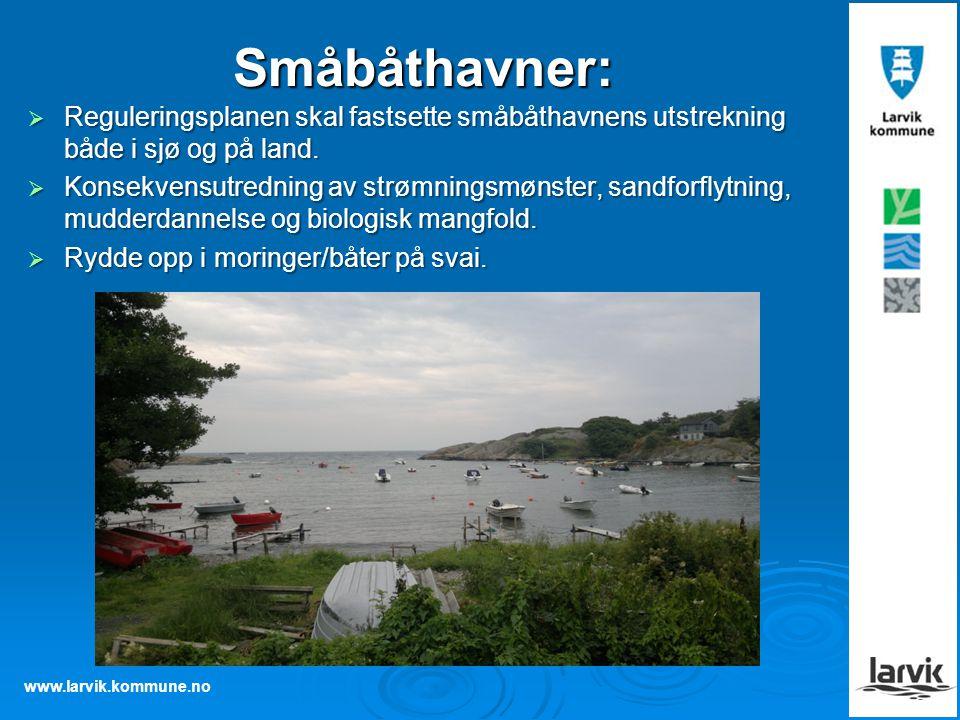 www.larvik.kommune.no Småbåthavner:  Reguleringsplanen skal fastsette småbåthavnens utstrekning både i sjø og på land.  Konsekvensutredning av strøm