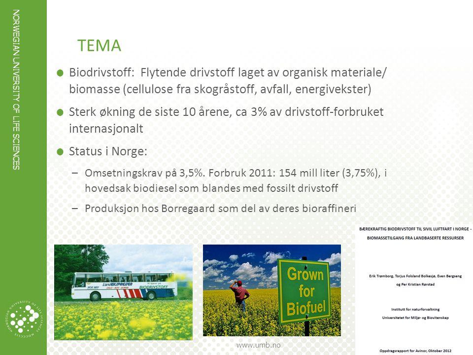 NORWEGIAN UNIVERSITY OF LIFE SCIENCES www.umb.no SUKESESSFAKTORER FOR BIODRIVSTOFF  Rimelig råstoff, utgjør 30-50% av produksjonskostnadene ( IPCC-SRREN 2011 antok biomassepriser fra 3-14 øre/kWh i 2020-2030)  Kompetanse og kapital  Politisk vilje = støtteordninger NORGE?