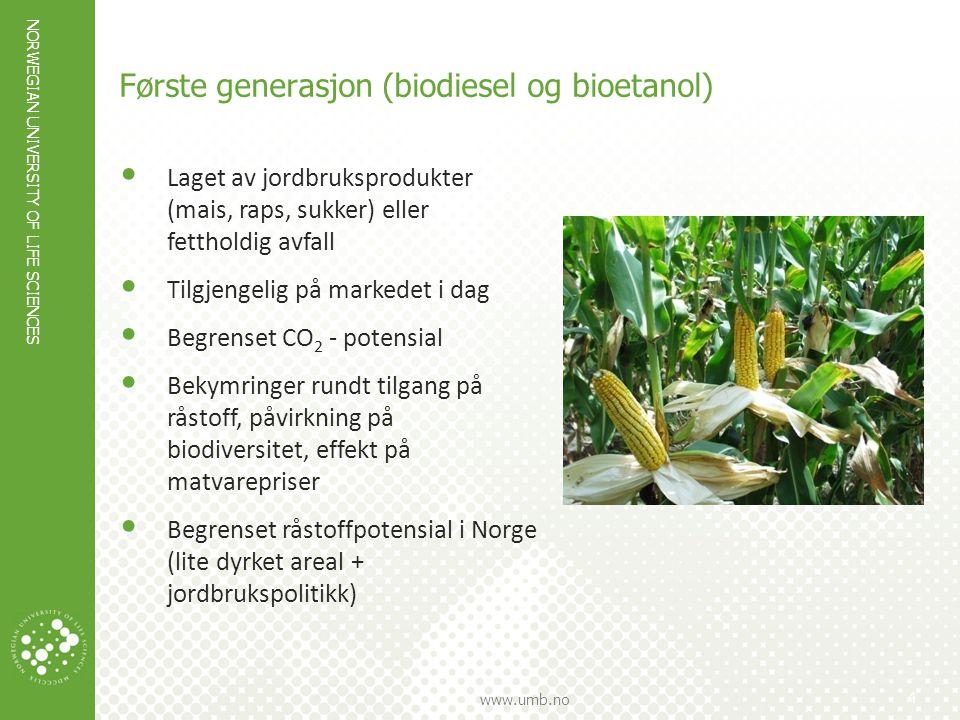 NORWEGIAN UNIVERSITY OF LIFE SCIENCES www.umb.no 5 Andre generasjon biodrivstoff Biodiesel og etanol fra cellulose Lages av råvarer som ikke brukes til mat (cellulose fra skogråstoff, avfall, alger) = større energipotensial Større CO 2 -potensial Ingen direkte konkurranse med mat Mange teknologiske retninger i test- pilot-demofaser Ser ut til å bli en utvikling mot svært store anlegg – rimelig råstofftilgang sentralt På sikt kan opp til ca 45% av energien i biomassen bli drivstoffenergi Planters cellevegg: et svært kompleks, tett og robust nettverk av sukkerpolymerer; lignin kommer i tillegg